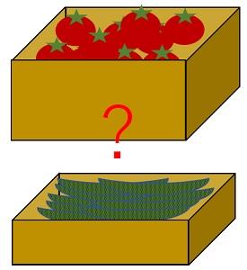 箱入り野菜